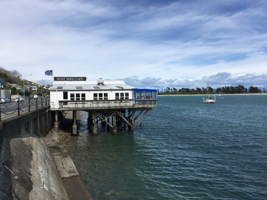 The Boat Shed in Nelson | International Hotdish