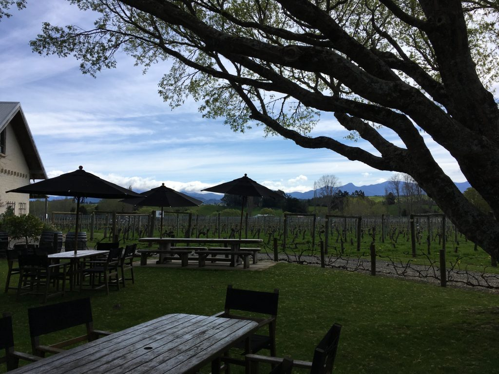 View at Neudorf Vineyards | International Hodish