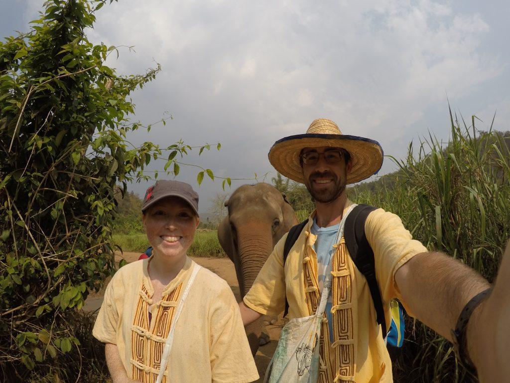 walking with elephants in thailand - International Hotdish