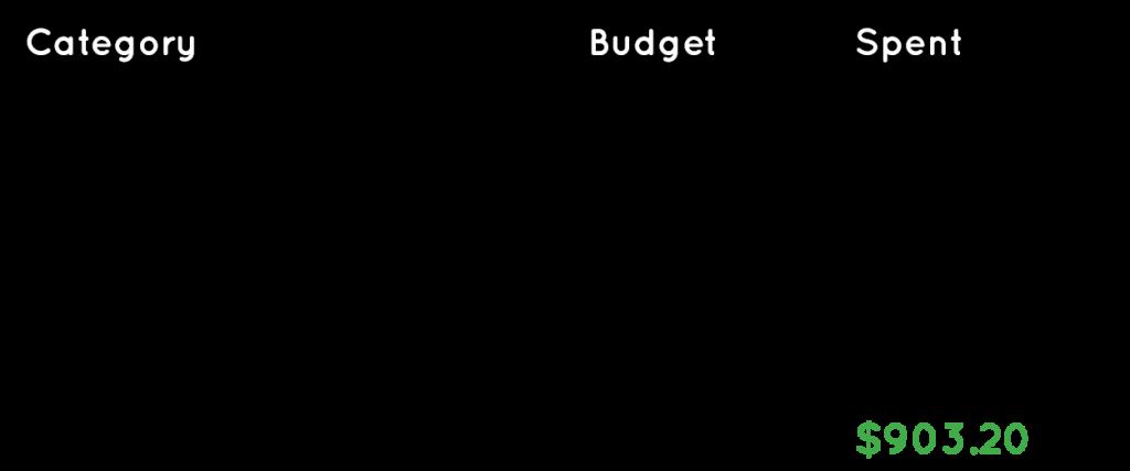 Travel expenses for Belgium